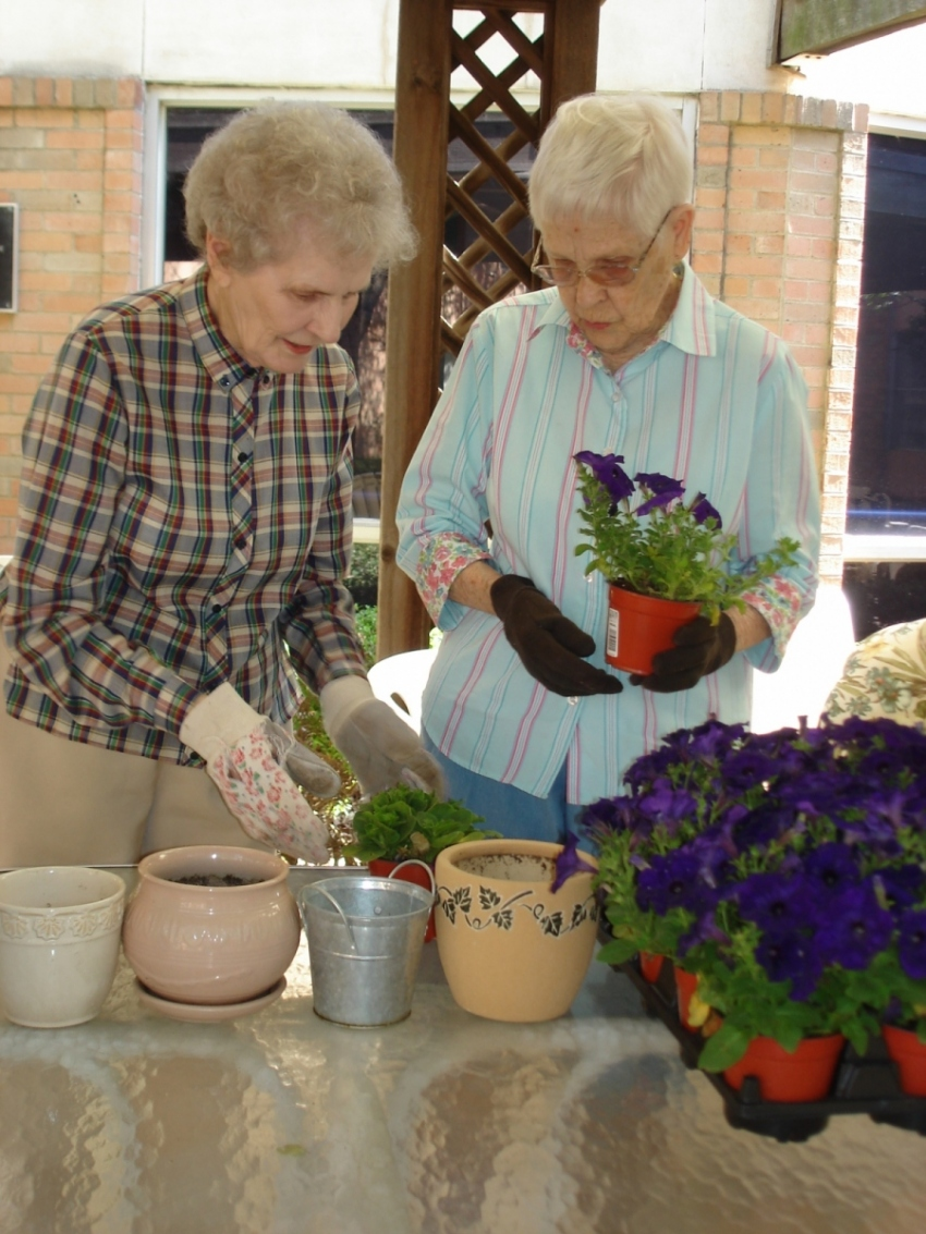 Potting-plants
